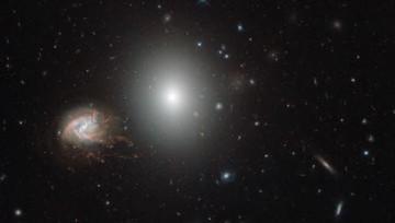 Hubble сделал детальный снимок скопления Волос Вероники