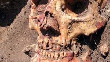 Древнейшая эпидемия чумы могла стать причиной гибели европейских культур неолита